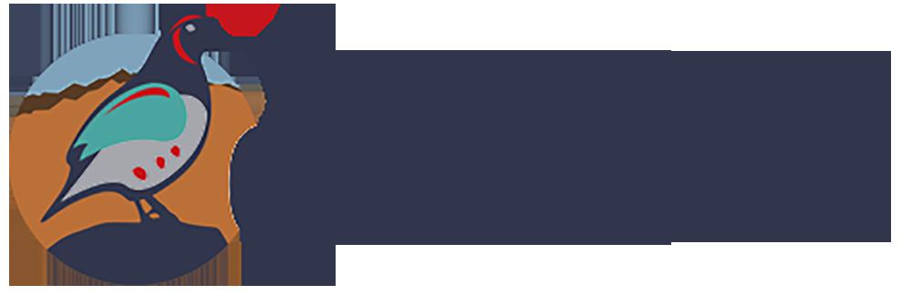 Eastern Arizona Courier
